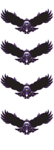Bird Hawk Hockey