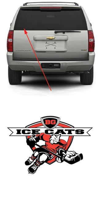 BG Ice Cats