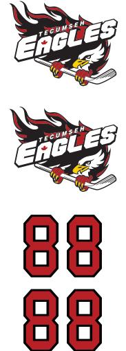 Tecumseh Eagles