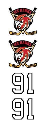 Ice Hawks