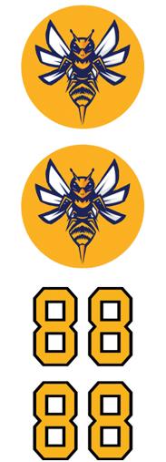 Murder Hornets 5