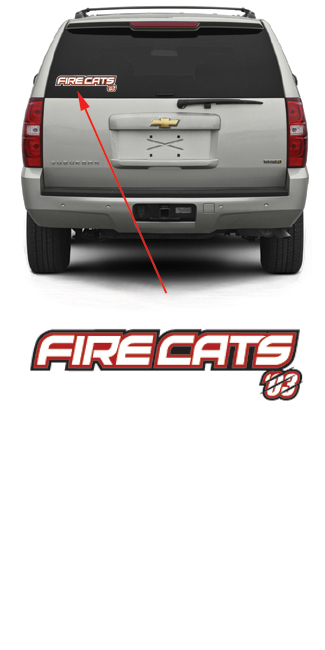 Firecats Hockey