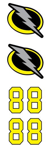 Lightning Hockey Team