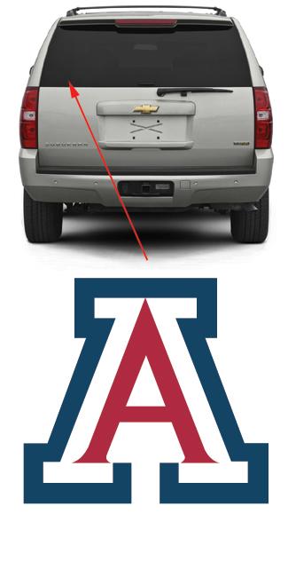 Arizona Wildcats Hockey