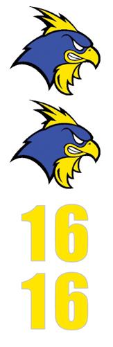 Blue Hens Hockey Club