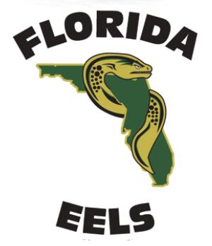 Team Logo Image