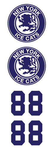 New York Ice Cats Hockey