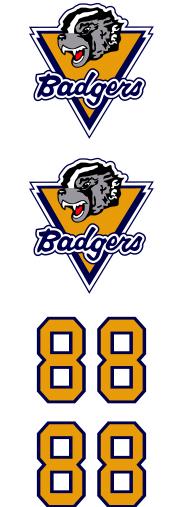 Beaver County Badgers