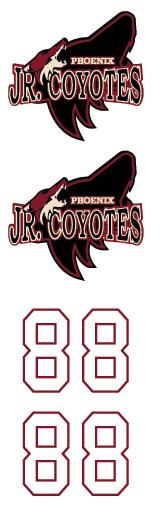 Arizona Jr Coyotes 2 Hockey