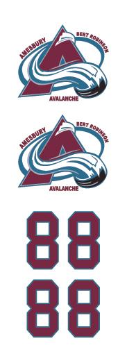 Amesbury Avalanche