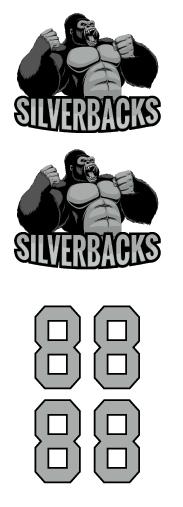 Silverbacks Hockey