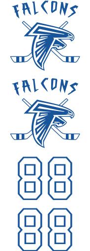 Danvers Falcons 2