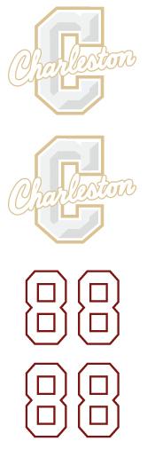 Charleston Hockey